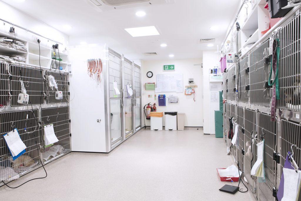 Abbey House Veterinary Hospital