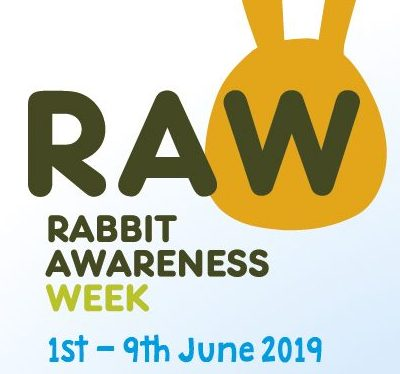 Rabbit Awareness Week 1st – 9th June 2019