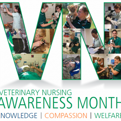 Veterinary Nursing Awareness Month 2019