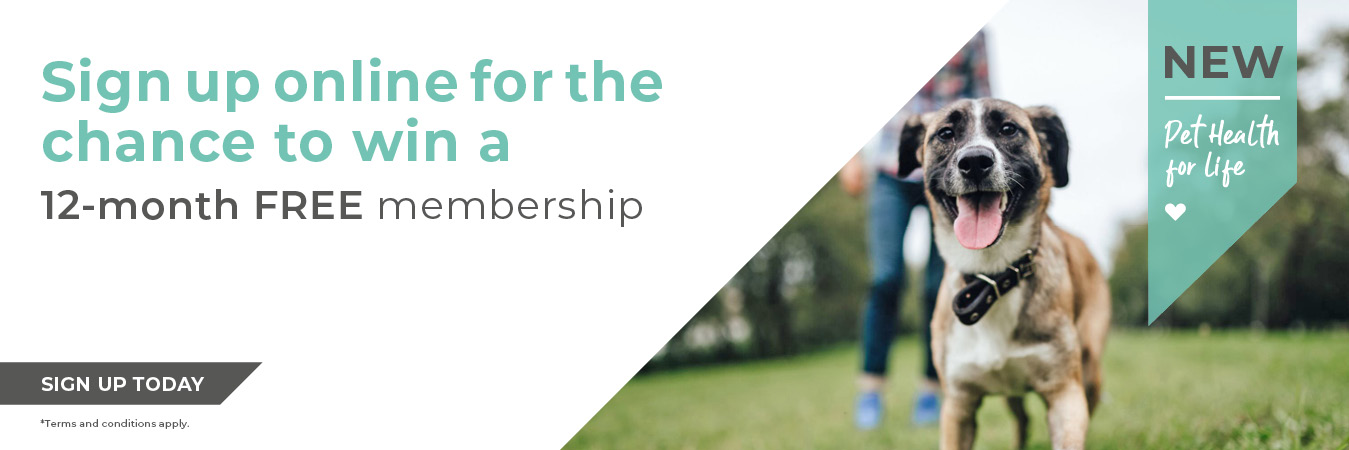 Sign up online for the chance to win a 12-month FREE membership