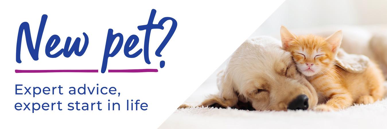 New Pet? Expert advice, expert start in life